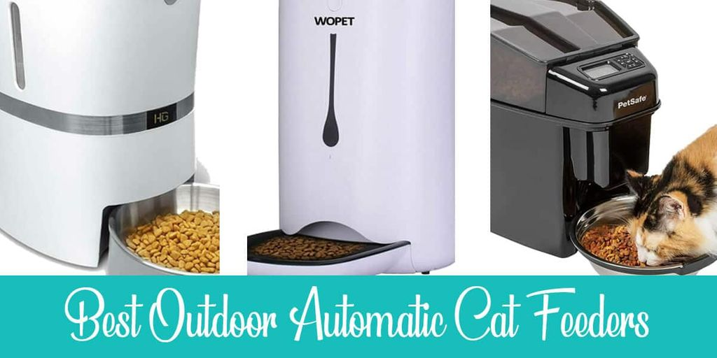 Outdoor Automatic Cat Feeders